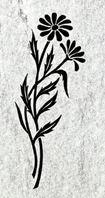 Blomster, planter og trær